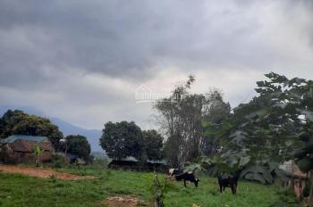 Chính chủ cần bán 1200m2 đất thổ cư view tuyệt đẹp tại Vân Hòa giá chỉ 980 triệu
