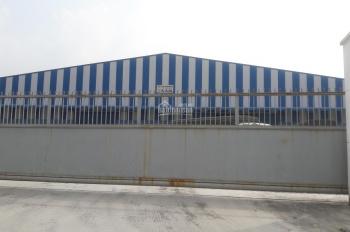 Cho thuê nhiều kho xưởng khu vực Thuận An. DT 200m2, 500m2, 1000m2, 2000m2, 5000m2, 10.000m2 (MTG)