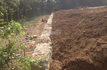 Bán đất tại thôn Đồng, Si, xã Nhuận Trạch, huyện Lương Sơn, tỉnh Hòa Bình