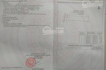 Cần bán đất trồng cây lâu năm ở Xuân Bảo, Cẩm Mỹ, Đồng Nai. Giá bán 750tr