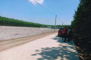 Mình cần bán 5x30m x 50m2 thổ cư - sổ sẵn - đất thị trấn Chơn Thành, Bình Phước giá đầu tư