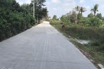 Bán hết dự án hơn 2 hecta đã tách sổ 1000m2 trở nên cho mỗi nền, đường đá 8m tại Trảng Bom