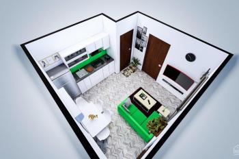 Cho thuê căn hộ mini khu vực phường Phú Thuận, Quận 7