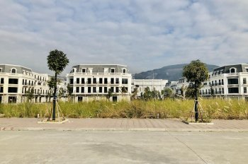 Chính chủ cần bán ô đất nền gần Vincom, Vinhomes Cẩm Phả cho ai có thiện chí mua để ở hoặc đầu tư