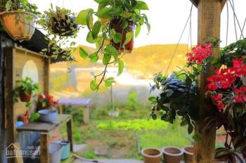 Đầu tư nhà vườn Nhơn Trạch, giá tốt đừng bỏ lỡ thông tin này
