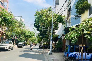 MT kinh doanh đường Nguyễn Ngọc Nhựt P Tân Quý, DT 4x20 nhà C4 giá 8,7 tỷ. Đông dân qua lại, KD tốt