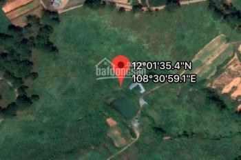 Quỹ đất lớn hơn 40ha ở Đạ Sar - Lạc Dương - Lâm Đồng