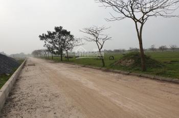 Chính chủ nhờ bán gấp lô G đất dự án sinh thái Cẩm Đình Hiệp Thuận, Phúc Thọ, giá tốt