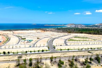 Đầu tư tại Quy Nhơn nên đầu tư vào đất nền hay đất dự án? Xem ngay để lựa chọn