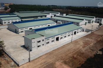 Cho thuê kho xưởng xây mới theo tiêu chuẩn trong Khu công nghiệp Hố Nai 3, huyện Trảng Bom, ĐN