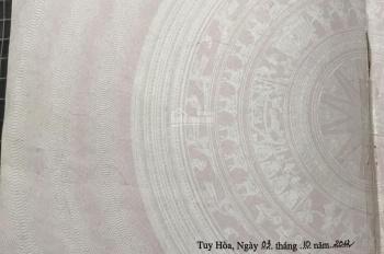 Bán đất biệt thự 10x17m tại Phước Hậu 2, Tuy Hòa. Liên hệ 0905.240.429
