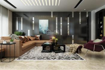 Chính chủ bán nhanh penthouse tại căn hộ 4S Riverside Garden KP 3, P. Hiệp Bình Chánh, Q. Thủ Đức