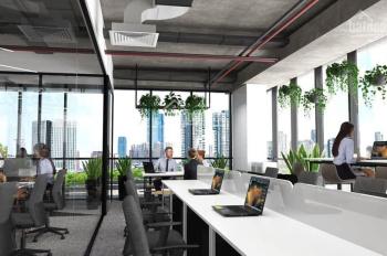 Văn phòng Cityland cho thuê 25 - 40m2 (Cọc 1 tháng), giá từ 5tr - 8tr/th