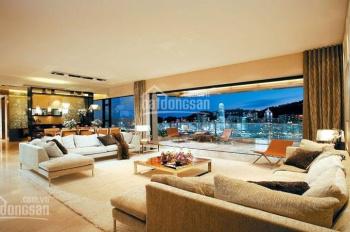 Căn hộ Penthouse sân vườn The Golden Star Q7, TT 50% nhận nhà, tặng 1 năm PQL+Giàn máy lạnh âm trần