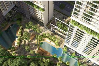 Bán căn hộ A5,8,9 B10 T11 cc Anland Lake View giá rẻ nhất thị trường chỉ từ 1,6 tỷ - 0984950295