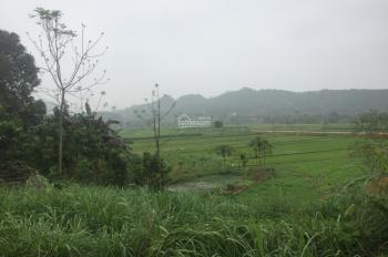 Chỉ 01 lô duy nhất 1000m2 đã có khuôn viên nhà vườn vị trí đắc địa giá rẻ tại Vân Hòa, Ba Vì, HN