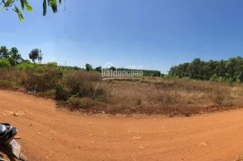 Bán 5000m2 đất xã Đông Hòa, Trảng Bom, giá rẻ 2 tỷ