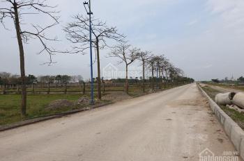 Chính chủ nhờ bán nhanh một số lô đất dự án Cẩm Đình, Phúc Thọ