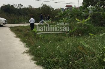 Bán đấu giá BĐS tại khu Đồng Ao, xã Phúc Hòa, huyện Phúc Thọ, Hà Nội