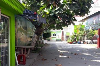 Cho thuê nhà mặt tiền đường Nguyễn Văn Quá, Đông Hưng Thuận, Quận 12, DT 14x42m