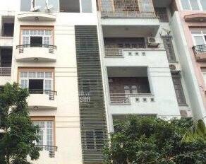 Cho thuê nhà riêng nguyên căn làm văn phòng 65m2 * 6 tầng, giá 45 tr/th KV Trần Thái Tông, Cầu Giấy
