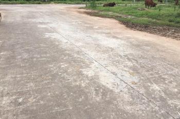 Bán đất phân lô khu đô thị mới xã Đình Tổ, huyện Thuận Thành, tỉnh Bắc Ninh