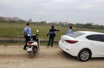 Bán đất Cẩm Đình, Hiệp Thuận lô đẹp giao dịch ngay giá cực tôt F46, E8,F61, E29, E33, LH 0853256888