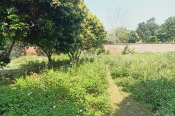 Cần bán lô đất 2900m2 đã có tường bao xung quanh vị trí đẹp nhất tại Hòa Sơn, Lương Sơn, HB