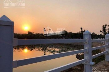 Chỉ 60 lô Hòa Lạc Lotus - view hồ sinh thái 1000m2 - đất nền trung tâm Hòa Lạc - sổ đỏ cầm tay