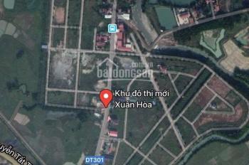 Bán đất biệt thự khu đô thị mới Xuân Hòa