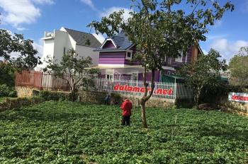 Bán lô đất mặt đường Mai Anh Đào, Phường 8, thành phố Đà Lạt, tỉnh Lâm Đồng. LH 0936291699 Hà