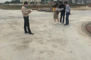 Bán đất đấu giá Mạo Khê, thị xã Đông Triều, Quảng Ninh, giá rẻ. LH 0989990222