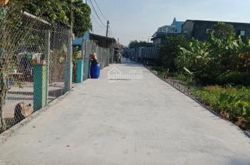 Do chủ thiếu nợ nên cần bán gấp căn nhà ở xã Bình Lợi, huyện Bình Chánh, DT 234,3m2 giá 2,25 tỷ