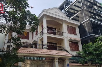 Cho thuê villa mới MT đường Huỳnh Lan Khanh, P. 2, Tân Bình, 1T2L, 16x16m: 083680006