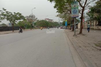 Bán đất kinh doanh khu đấu giá 31ha Trâu quỳ, Gia Lâm, Hà Nội