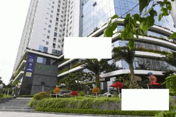 Văn phòng tòa Ecolife, 58 Tố Hữu cho thuê DT từ 60 - 200m2, giá chỉ từ 11tr/th