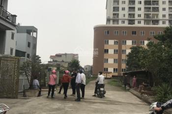 Em cần bán 50m2 đất DV Tân Việt kinh doanh được. Ô ô tô đỗ cửa, LH 0984218229 để xem đất