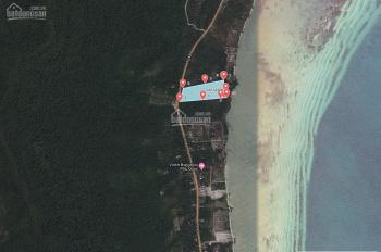 Chính chủ bán đất siêu đẹp tại Cây Sao, Hàm Ninh 4.46ha mặt biển, mặt tiền TL48, giá cho nhà đầu tư