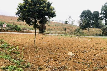 Bán đất thổ cư trang trại nhà vườn diện tích 1550m2 tại Phú Mãn, Quốc Oai, HN, giá 2.5 triệu/m2