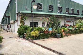 Định cư Canada bán gấp cụm nhà xưởng DT 18000m2 mặt tiền Trịnh Quang Nghị, gần ngã 4 TQN và NVL