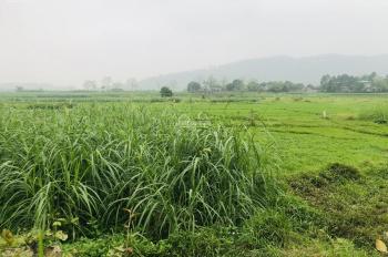 Bán đất thích hợp làm trang trại nhà, vườn tại Ba vì, Hà Nội, giá 280 triệu/ sào