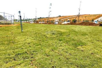 Đất nền sẵn sổ, diện tích vàng 100m2, vị trí đẹp