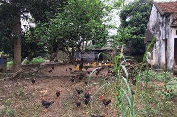 Cực hot! Chỉ hơn 1 tỷ, có ngay khuôn viên nhà, vườn, ao, chuồng 1888m2 tại Lương Sơn, Hòa Bình