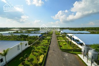 Bán trang trại chăn nuôi 10000 con heo, diện tích 10 ha đang cho thuê 500tr/tháng, ĐT: 0909.136.007