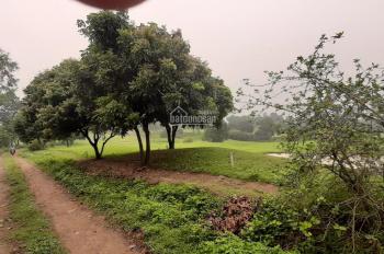 Bán 1800m2 tại sân golf Skylake Lương Sơn Hòa Bình