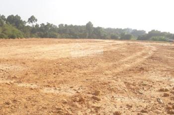 Bán đất Bình Chuẩn ngay Thuận Giao giá rẻ chỉ 4,5 triệu/m2