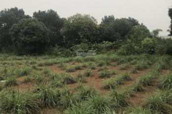 Cần bán gấp mảnh đất 9700m2 có 800m2 đất ở giá 500.000đ/m2 cách QL6 1km