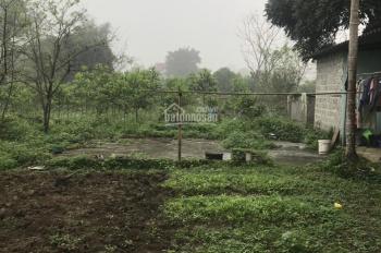 3600m2 số sẵn NC 4, ao cá, view cánh đồng thoáng mát phù hợp làm nhà vườn tại Lương Sơn, Hòa Bình