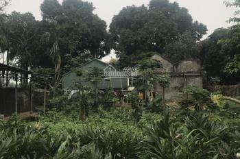 1800m2 phù hợp làm nhà vườn, nghỉ dưỡng tại Lương Sơn, Hòa Bình, giá 1,2 tỷ