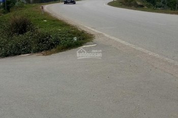 Bán đất Văn Giang 1000m2 vị trí đẹp - LH: 0919963689